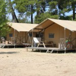 Bi Village Safaritenten van Glamping4all