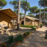 Overzicht van de safaritenten op camping Cypsela te Spanje