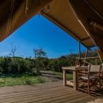 Uitzicht van je safaritent op Camping Capalbio