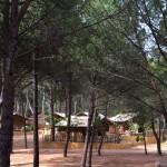 Overzicht Safaritenten Punta Milà