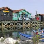 Beroemde huisjes op Ile d'Oleron