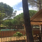 Punta Mila de safaritenten naast het zwembad