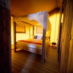 Villa Alwin Safaritent slaapkamer