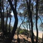 Camping Blucamp in Toscane, 8 km van de zee