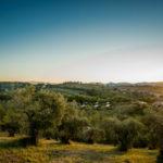 Lodges op Pian di Boccio en wijde omgeving