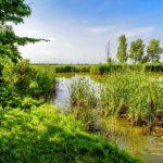 Natuur rondom Tenuta Regina vissen