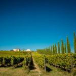 Umbrie, omgeving Pian di Boccio