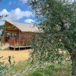 L'Antica Fornace met olijfbomen