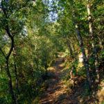Wandelen vanaf camping Delle Rose