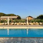 L'Antica Fornace zwembad met safaritenten op de achtergrond