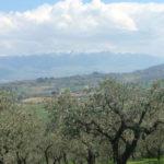 Omgeving camping Pian di Boccio