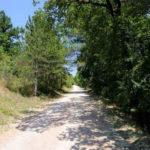 Mountainbiken in de omgeving van camping Pian di Boccio